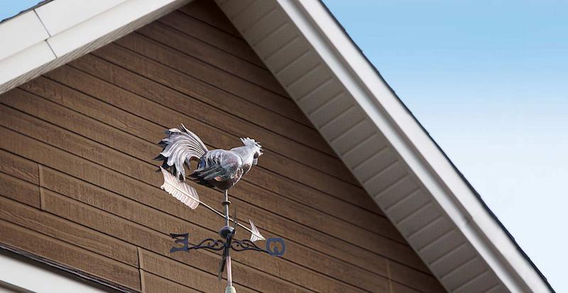 Fassadenverkleidung Canexel Fassaden Holz Kunststoff